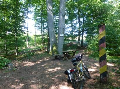 2-Länder-Eiche im Südharz zwischen Zorge (Niedersachsen) und Ellrich (Sachsen-Anhalt)