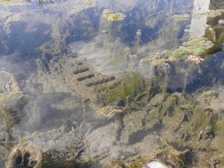 Gully längere Zeit unter Wasser