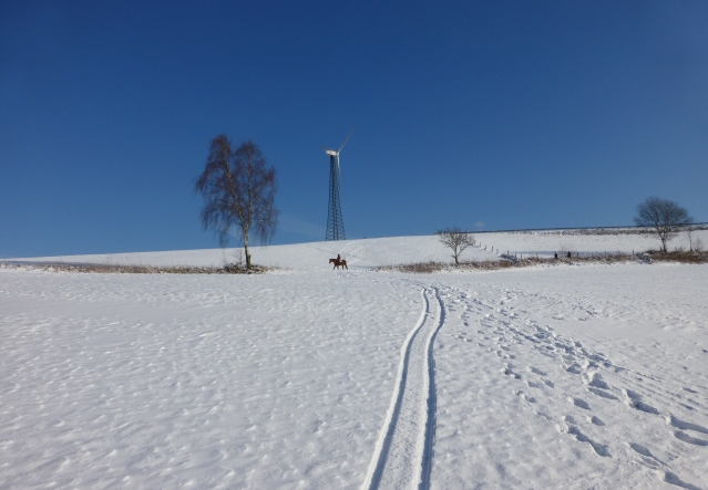 Schneelandschaft bei Menden-Asbeck