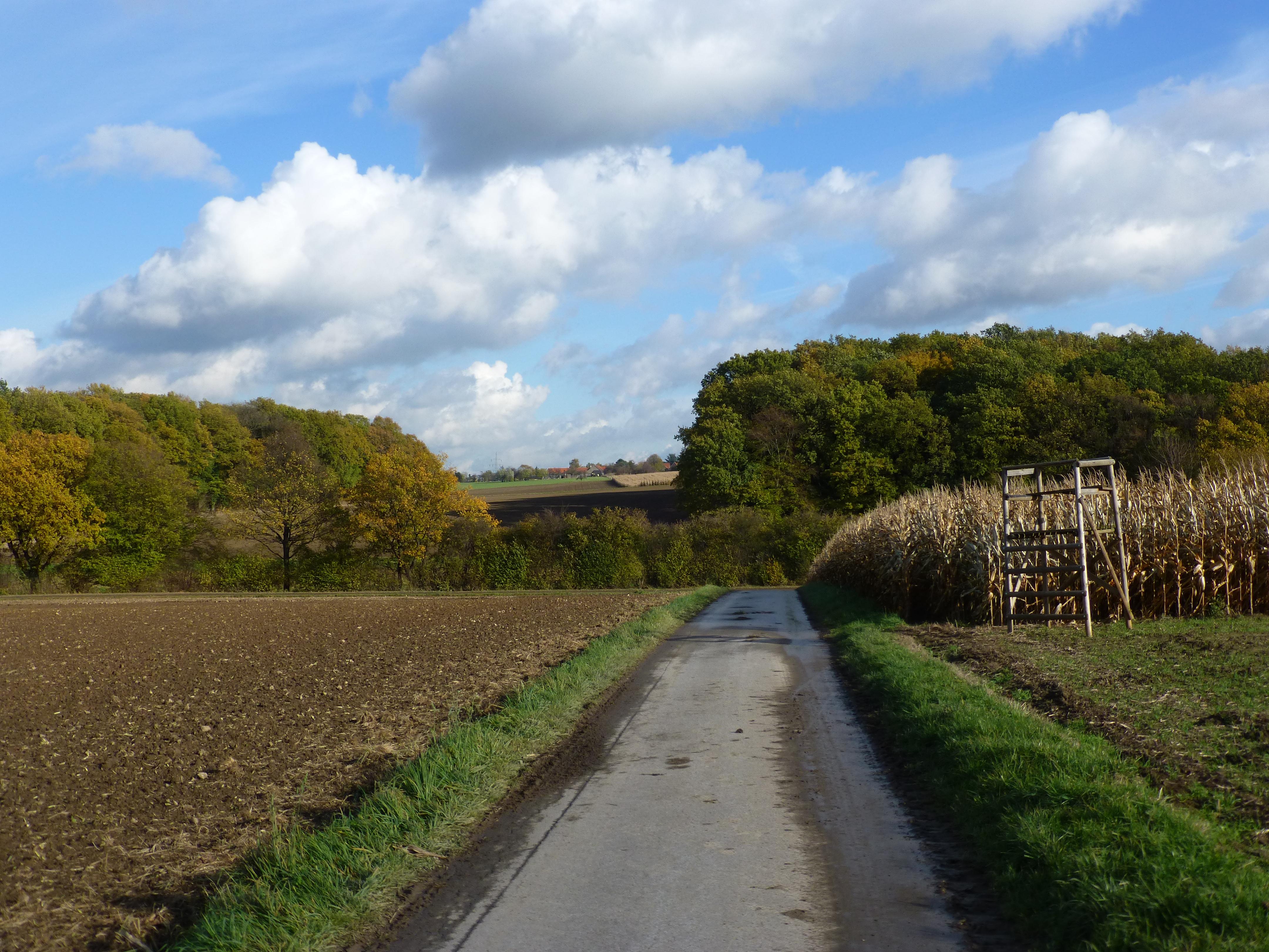 Herbsttag auf dem Haarstrang zwischen Billmerich und (Süd-)Unna