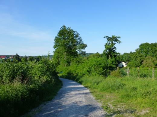 Menden, Waldemei/Leitmecke; 06.06.13
