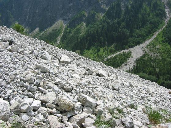 Felsgeröllfeld(er) in den Allgäuer Alpen