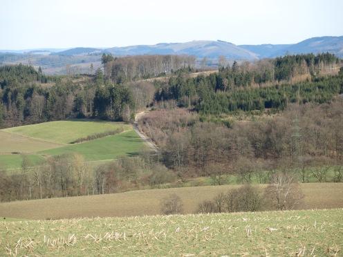 Landschaft bei Sundern im Sauerland
