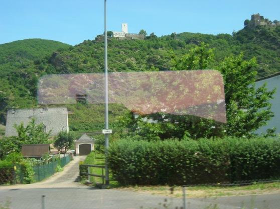 aus dem Zugfenster im mittleren Rheintal ; Sommer