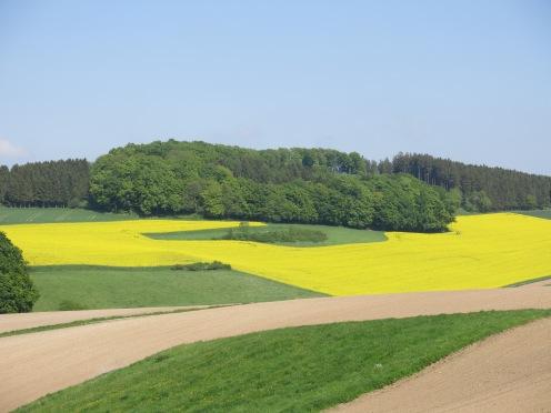bei Menden/Sauerland - Asbeck; Pfingsten 2013