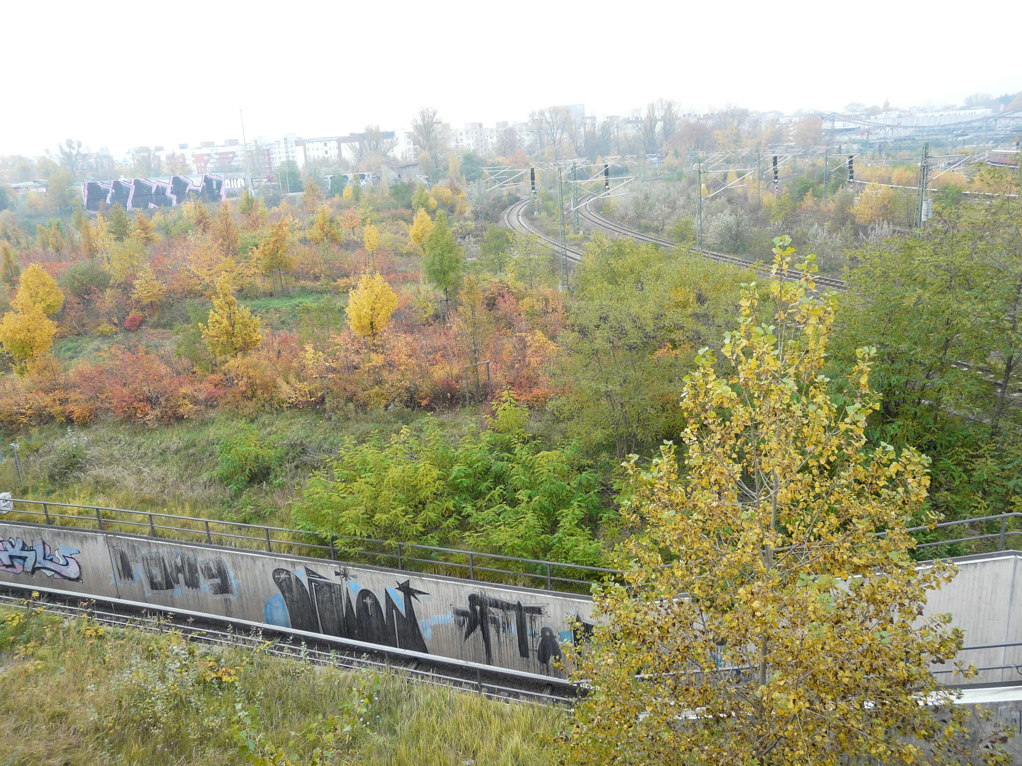 1.11. Feiertag Berlin