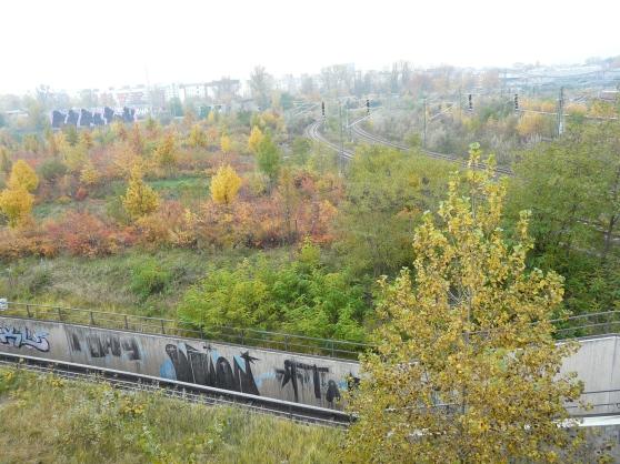Berlin, Bahn- und Brachgelände zwischen Wedding und Prenzlauer Berg, 01.11.10