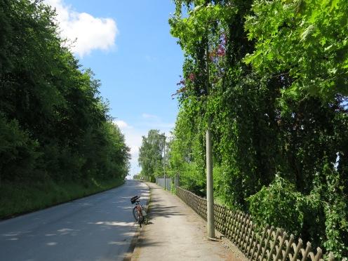 Menden/Sauerland, Richard-Rinker-Str.; 02.06.13