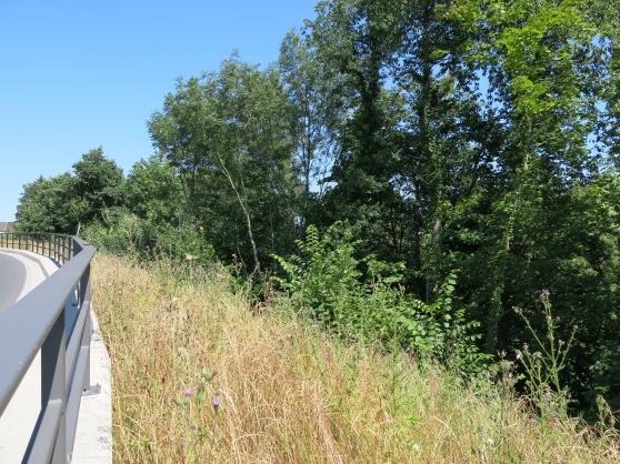Menden/Sauerland, über der Hönne; 21.07.13