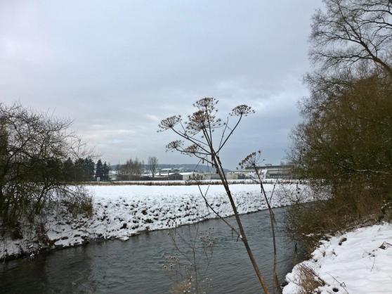 Menden/Sauerland, an der Hönne; 20.01.13