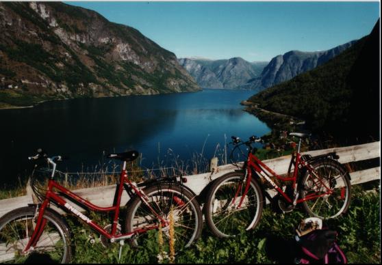 Aurlandsfjord-Raeder