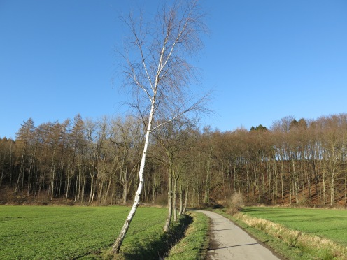 am Südrand des Haarstrangs bei Fröndenberg