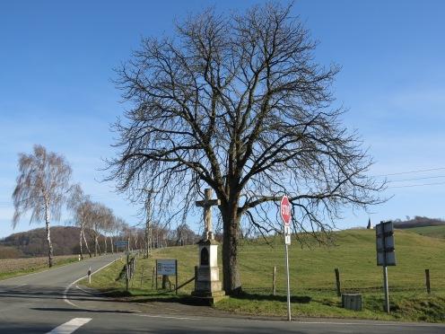 am Kloster-Oelinghausen bei Arnsberg-Herdringen im Nord-Sauerland; 09.03.14