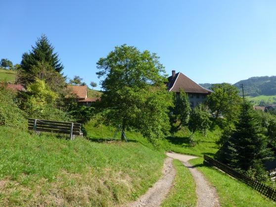 Freiamt-Brettental (Schwarzwald/Breisgau); 04.09.13