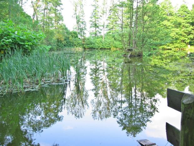 Trapperts Teich in Menden/Sauerland