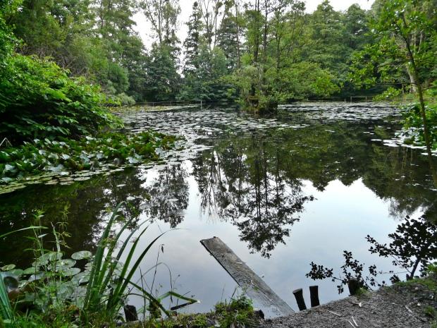 Menden, Trapperts Teich