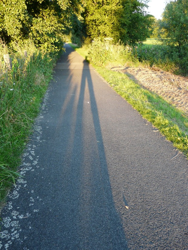 auf dem Baarbachradweg