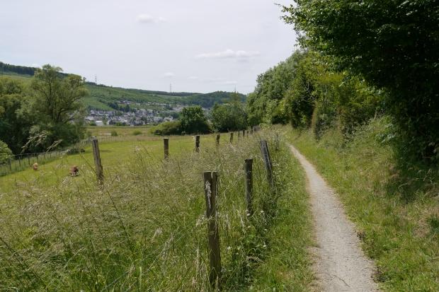 Waldroute zwischen Bestwig und Velmede (hinten)