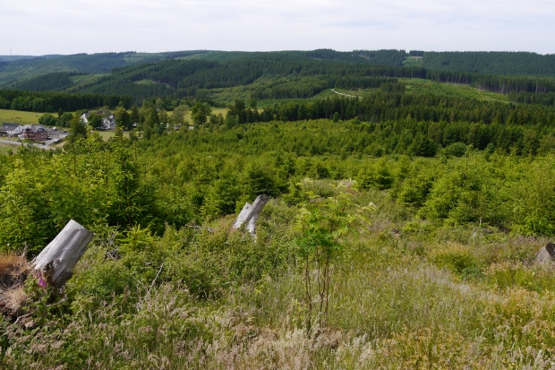 vom Sengenberg auf Föckinghausen