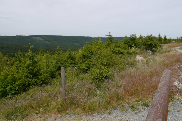 Aussichtsplattform auf dem Sengenberg