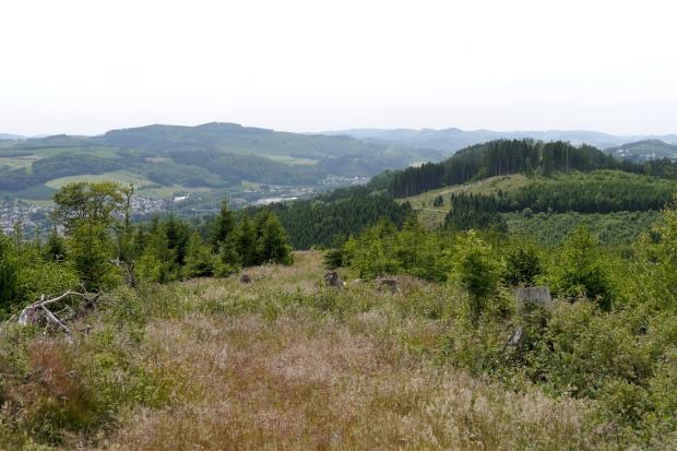 vom Sengenberg auf Bestwig-Velmede, hinten rechts Eversberg