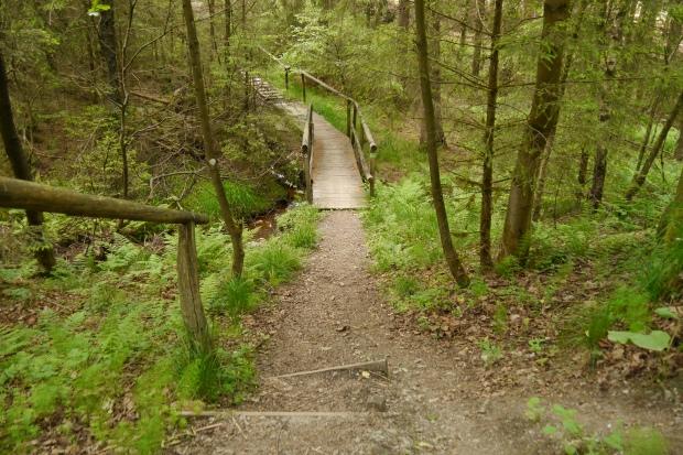 Holzsteg an der Waldroute über den Langer Bach südlich von Warstein