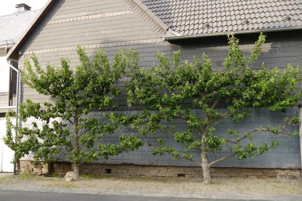 Hirschberger Tor, Nebengebäude