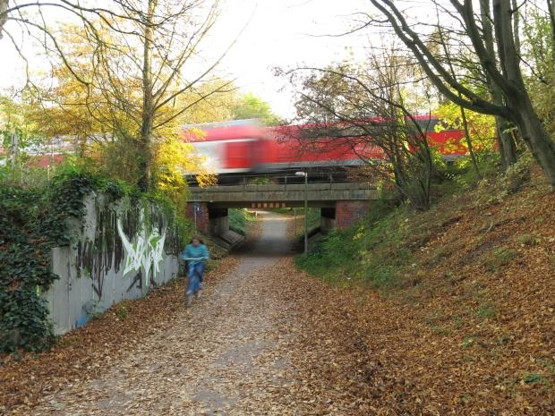 Neuss, Radweg unter Bahnbrücke, mit Zug