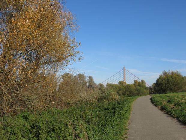 Rheinradweg unterhalb der Fleher Brücke bei Neuss-Grimlinghausen