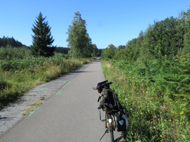 Vennbahnradweg im Münsterwald